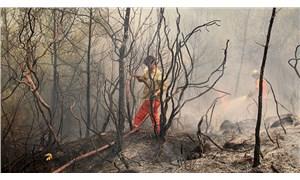 Orman işçilerinin çalışma şartları ağır, ekipmanları yetersiz: Cerrahi maskeyle yangın mücadelesi!