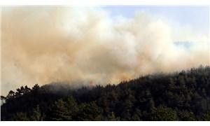 Orman yangınlarında 11. gün: 5 orman yangını devam ediyor