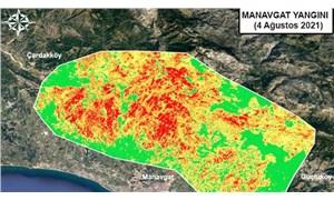 Orman yangınlarının etkili olduğu alanlar haritalandırıldı