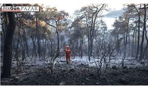 Orman yangınlarının düşündürdükleri…