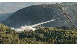 Orman yangınlarında son durum: Milas ve Köyceğiz yangınları devam ediyor