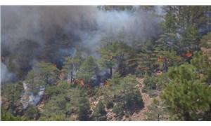 275 yangından 274'ü kontrol altına alındı; Köyceğiz hala yanıyor