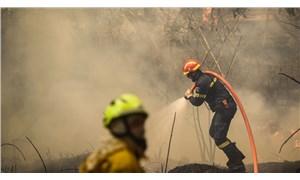 Yunan bakan, yangınlarla mücadelede edemedikleri için özür diledi