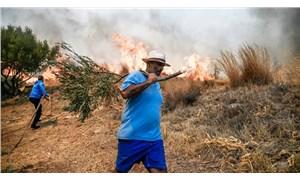 Yunanistan'da orman yangınları yeniden başladı: 4 yerleşim birimi tahliye edildi