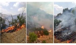 Hakkari Şemdinli'de orman yangını kontrol altına alındı