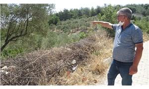 Mesire alanı rant kurbanı