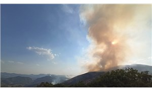 Dersim'de yangınlar yayılıyor: Müdahale hızlanmalı