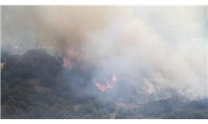 Orman Genel Müdürlüğü: Bugün çıkan 7 yangın kontrol altına alındı