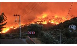 Orman İşletme Müdürlüğü, yangınlardan önce çıktığı ihalenin sözleşmesini yangından sonra imzaladı