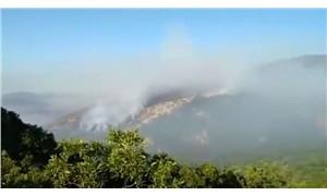 Dersim'deki orman yangını 12. gününde: Havadan müdahale şart
