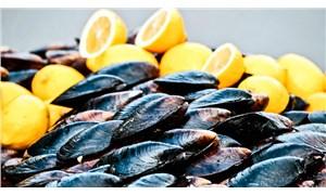 Din İşleri Yüksek Kurulu'ndan deniz ürünleri hakkında yeni açıklama: Haram olduğuna dair karar bulunmuyor