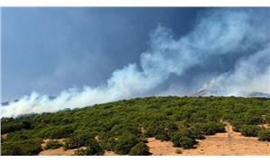 Bingöl'deki yangın kontrol altına alındı