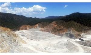 Bakanlık 10 ilde 11 maden sahasını ihaleye açıyor