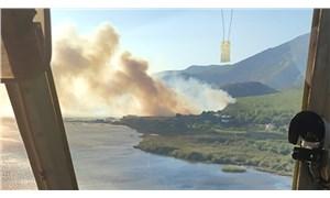 Söke'de çıkan orman yangını kontrol altına alındı