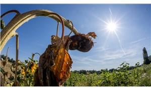 Meteoroloji raporu: Son 50 yılın en sıcak 6'ncı ağustosu yaşandı