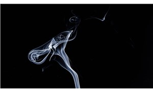 Sigara üreticisi Philip Morris, astım ilacı üreticisi Vectura'yı satın alıyor