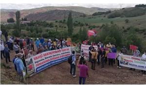 Madencilik Arguvan'ı haritadan silecek