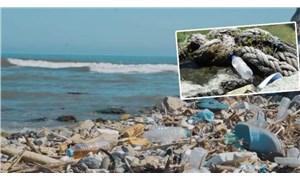 Karadeniz'de kirlilik; 500 metrekarede 2 bin 500 atık çıktı