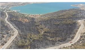 Nükleer santral firması, Silifke'de yanan ormanlara göz dikti iddiası