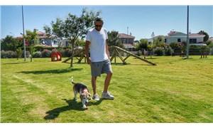 Çeşme'de köpeklere özel 5 'Pati Park' daha geliyor