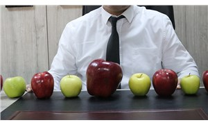 Isparta'daki bir bahçede 766 gramlık elma yetişti