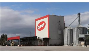 Aynes'in satış ihalesi gerçekleşti: Tek teklif, Tarım Kredi Kooperatifi'nin iştirakinden