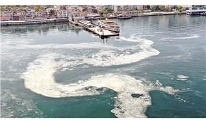 Prof. Dr. Mustafa Sarı: Marmara Denizi soğuyamıyor, müsilaj tehlikesi yine kapıda
