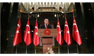 Erdoğan'ın 'istenmeyen kişi' çıkışına 4 ülke ve AP'den yanıt