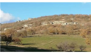 Kırklareli'nde kalker ocağı için 20 bine yakın ağaç kesilecek