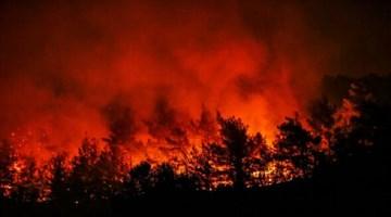 İzmir'de orman yangını sürüyor: İki mahalleye yaklaştı