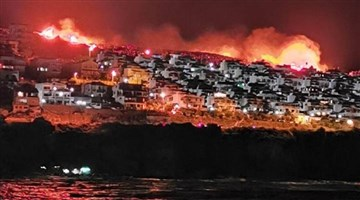 Yazlık sitelere yaklaşan yangın kontrol altına alındı