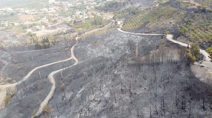 Hatay'daki yangın 22 saatte kontrol altında: CHP'li Yarkadaş'tan dikkat çeken iddia