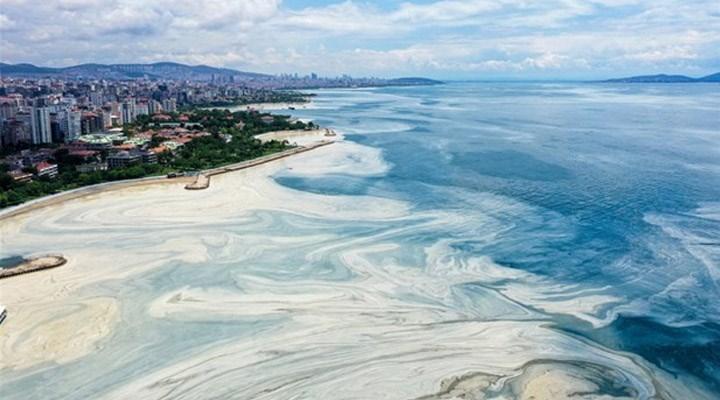 ODTÜ'den Marmara'da inceleme: Müsilaj oksijeni 2,5-3 saatte tüketti