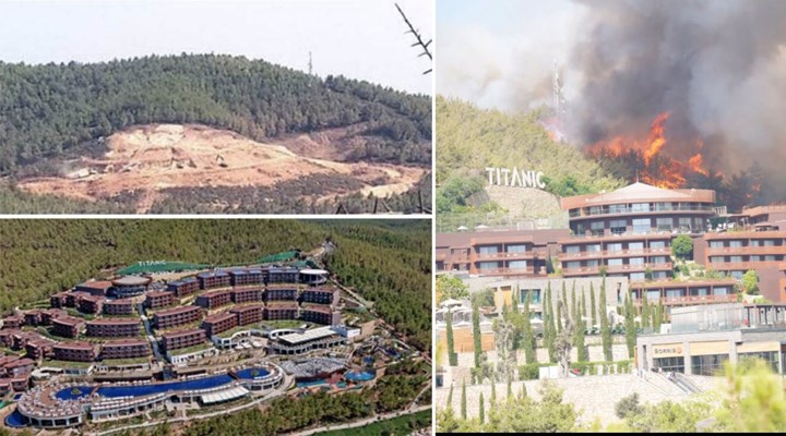 13 yıl önce yanan alana dikilmişti, bugün yangın nedeniyle tahliye edildi!