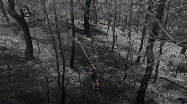 Orman yangınları 8. gününde: Yangın sayısı 16'ya, il sayısı 7'ye çıktı