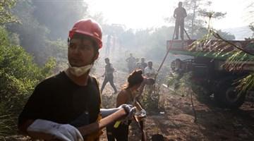 Türkiye'deki orman yangınları Guardian'da