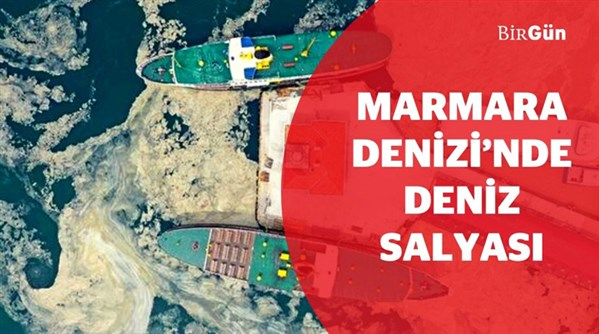 Marmara Denizi'ni esir alan müsilajın kaynağı nedir?