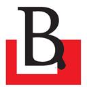 www.birgun.net